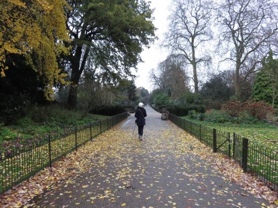 Kensington Park, London