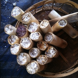 Sticky rice in bamboo sticks