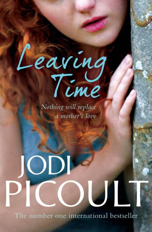Mother's Day gift guide - Leaving Time by Jodi Picoult